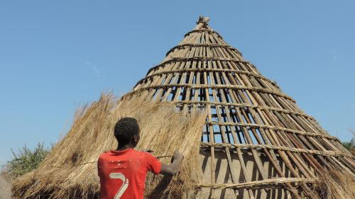 Repairing the hut´s roof_Upper Guinea